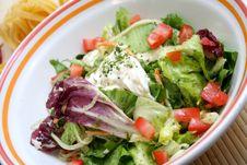 Free Mixed Salad Royalty Free Stock Photo - 6562365