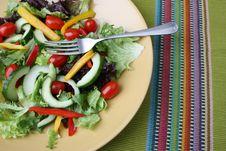 Free Salad Stock Photo - 6562820