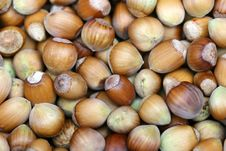 Free Walnuts Stock Photography - 6563602
