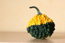 Free Pumpkin Stock Photography - 6563762