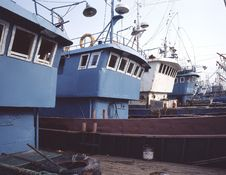Free The Fishing Harbor Royalty Free Stock Photo - 6563835