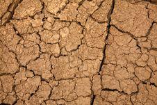 Free Dryness Stock Image - 6563851