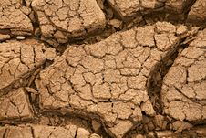 Free Dryness Stock Images - 6563874