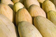 Free Melons Stock Image - 6564191