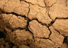 Free Dryness Stock Image - 6564211