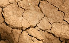 Free Dryness Stock Photo - 6564250