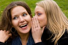 Free Two Happy Young Girlfriends Talking Royalty Free Stock Images - 6565949