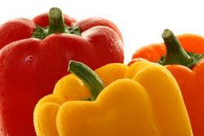Free Tops Of Dewy Bell Peppers Stock Image - 6566161