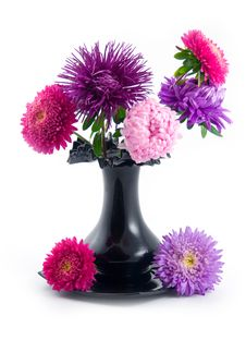 Free Black Vase With Bouquet Stock Images - 6566544