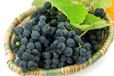 Free Fresh Grapes In A Basket Stock Photography - 6567362