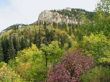 Free Fall Colors - Spearfish Canyon Royalty Free Stock Photos - 6567558