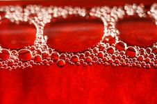 Free Red Bubbles Water Under Glass Bottle Royalty Free Stock Photography - 6567887