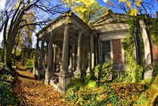 Free Jewish Cemetery In Wroclaw, Poland Stock Image - 6568261
