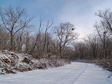 Free Wood Road In The Winter Stock Photography - 6569522
