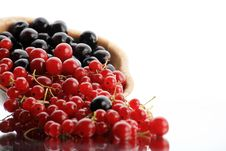 Free Currants Royalty Free Stock Image - 6569676