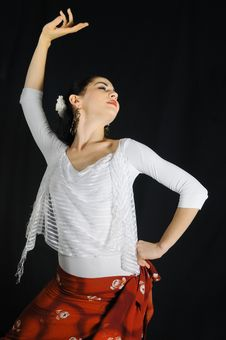 Free Flamenco Dancing Stock Photos - 6569853