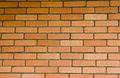 Free Red Brick Wall Stock Photography - 6570412