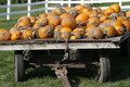 Free Wagon Full Of Pumpkins Royalty Free Stock Images - 6579069