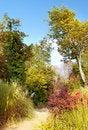 Free Autumn Scene Stock Photos - 6579413