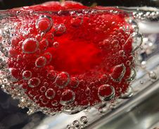 Free Raspberry In Tonic Water Royalty Free Stock Images - 6570269