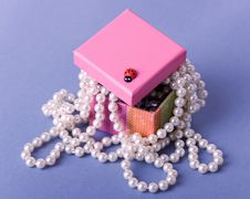 Free Box With Beads Stock Photos - 6570533