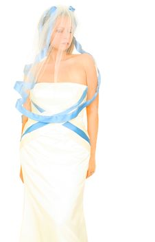 Free Bride In Her Veil Royalty Free Stock Photos - 6571068