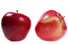Free Two Ripe Apples Royalty Free Stock Photo - 6573285