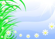 Free Flower Stock Images - 6573544