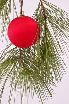 Free Red Christmas Tree Ornament Royalty Free Stock Images - 6573839