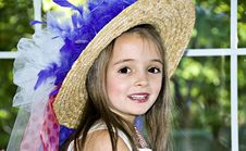 Free Ribbons, Feathers And A Hat Royalty Free Stock Photo - 6574565