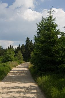 Free Path In Krkonose Stock Images - 6575184