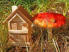 Free A Fly-agaric Is Red And Cottage. Royalty Free Stock Photography - 6575447