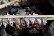 Free Fish Grill With Coal Stock Photo - 6575700