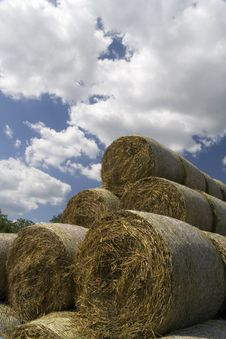 Free Hay Stock Photography - 6575742