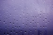 Free Water Drops Stock Image - 6576251