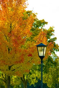 Free Autumn Latern Royalty Free Stock Photography - 6578417