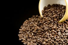 Free Spilled Coffee Beans Royalty Free Stock Photography - 6578937