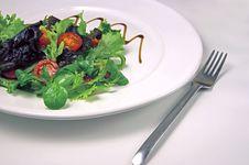 Free Green Salad Stock Photo - 6579800