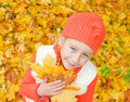 Free Girl With Autumn Leaves Royalty Free Stock Photography - 6580187