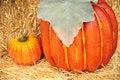 Free Pumpkins Stock Photography - 6588472
