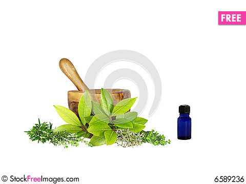 Free Medicinal And Culinary Herbs Royalty Free Stock Image - 6589236