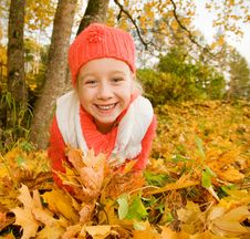 Free Little Girl With Autumn Leaves Royalty Free Stock Photography - 6580397