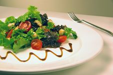 Free Green Salad Stock Images - 6580554