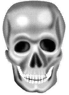 Free Skull Stock Photography - 6581182