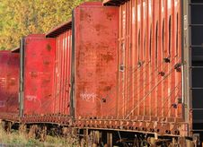 Free Railroad Car Graffiti Royalty Free Stock Image - 6582296