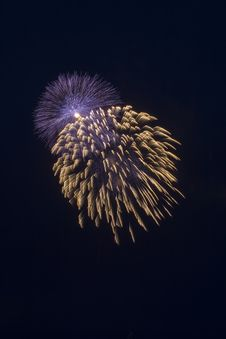 Free Firework At Hight Stock Photos - 6583603