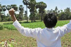 Man At Corn Farm Stock Photo