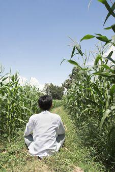 Free Man In Farming Stock Photos - 6583853