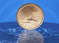 Free Falling Down Dollar Stock Photo - 6584620
