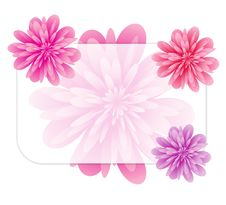 Free Floral Frame Stock Photo - 6585550
